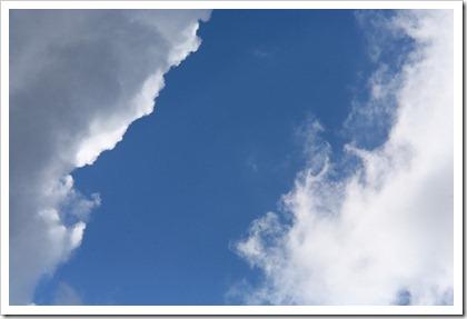 たまの青空